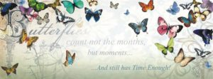 Butterfly Inspirations