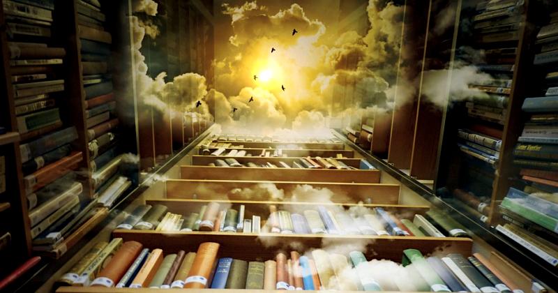 vivashe library